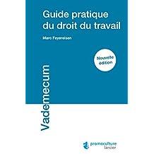 Guide pratique du droit du travail (Vademecum) (French Edition)
