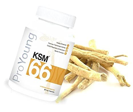 Buy ProYoung KSM-66 - 30 Veg Caps Online at Low Prices in