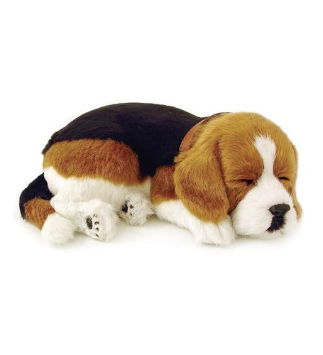 Perfect Petzzz Beagle Puppy by Wind & Weather (Image #1)