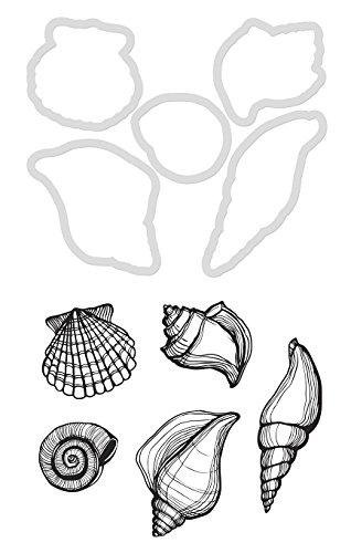 Kaisercraft DD910 Dies & Stamps-Seashells, 1.25