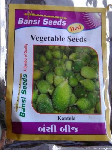 Bansi Seeds Spine Gourd Desi Momordica Dioica Kantola 50 Seeds 10 Packet Amazon In Garden Outdoors