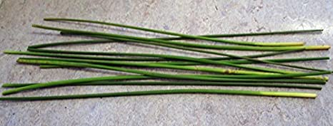 Brigid Cross 100 Make Your Own St Brigid Cross From Authentic Wild Irish Rushes Also Popular For Basket Weaving Supplies