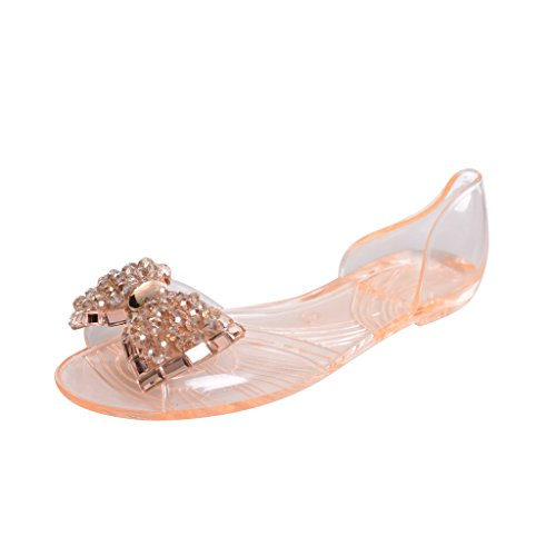 Dear Time Summer Women Jelly Sandal Shoes Slip On Bowtie Slippers champagne US 8.5