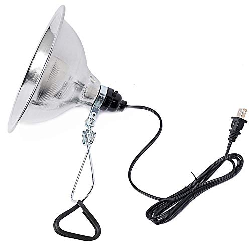Simple Deluxe Clamp Lamp Light with 8.5 Inch Aluminum Reflector up to 150 Watt  E26/E27 Socket (no Bulb Included) 6 Feet 18/2 SPT-2 Cord