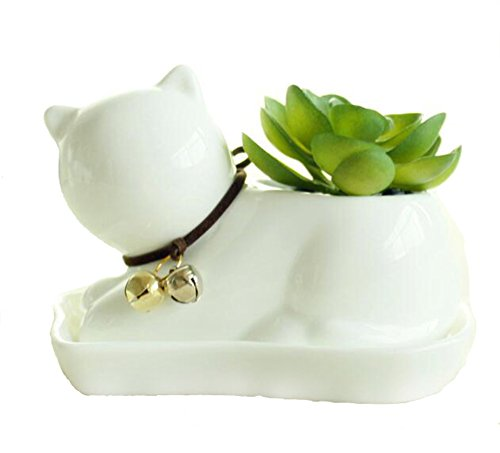 Youfui Cute Succulent Planter Animal Shaped Flower Pot Decor for Home Office Desk (Cat)