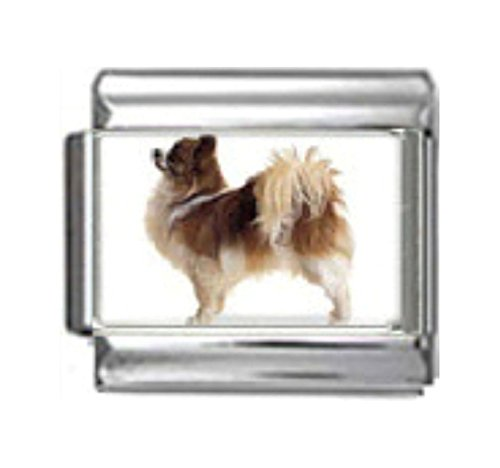 Stylysh Charms Chihuahua Dog Photo Italian 9mm Link DG145 ()
