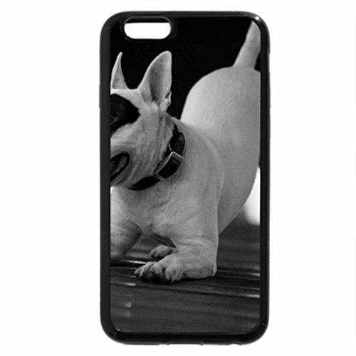 iPhone 6S Plus Case, iPhone 6 Plus Case (Black & White) - Cute Bull Terrier