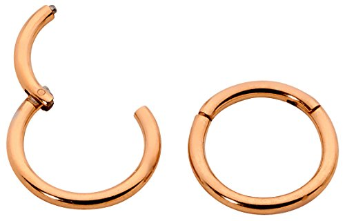 1 Pair Stainless Steel 16G (Regular) Hinged Segment Ring Hoop Sleeper Earrings Body Piercing - 16mm Rose (Etched Gold Earrings 14k Hoop)