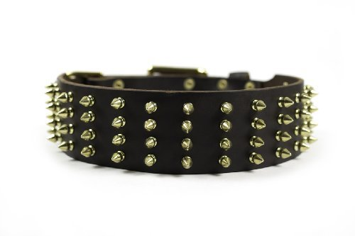 Dean & Tyler ''4 Row Spikes Brown Wide Dog Collar with Brass Spikes and Buckle, Size 26-Inch by 2-1/4-Inch, Fits Neck 24-Inch to 28-Inch