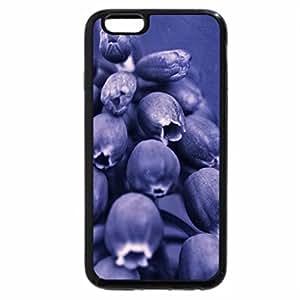 iPhone 6S Plus Case, iPhone 6 Plus Case, Blue Flower
