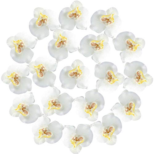 XYXCMOR Silk Orchids Heads 20pcs Fake Faux Orchid Phalaenopsis Artificial Flowers for Wedding Centerpieces Decorations Party Bridal Bouquets - Bouquets Bridal Orchid Phalaenopsis