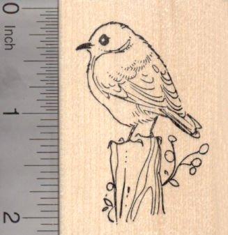Eastern Bluebird Rubber Stamp, American Thrush Family Blue Bird