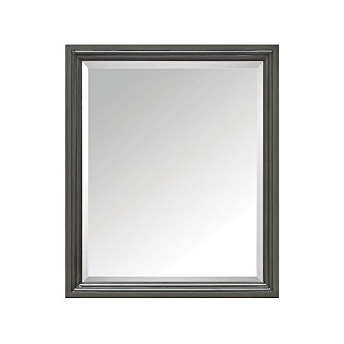 Classical Vanity (Avanity Thompson 28 in. Mirror in Charcoal Glaze finish)