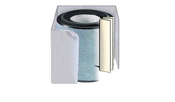 El filtro de repuesto para purificador de aire Austin: Amazon.es ...