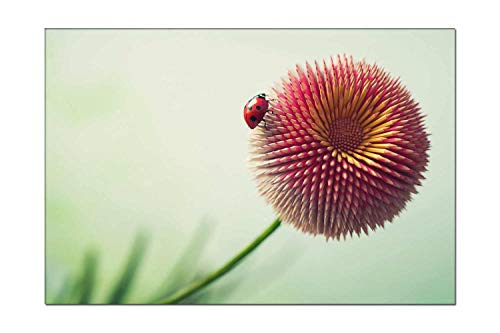 Pigbangbang Mural Artwork On Canvas - Ladybug On Pencil Flower Artwork Modern Picture for Dining Room Wall Decor Home Decoration Ready to Hang 12