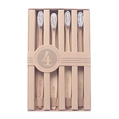 Toilet Phillips Environmental (Reflections Toothbrush Set)