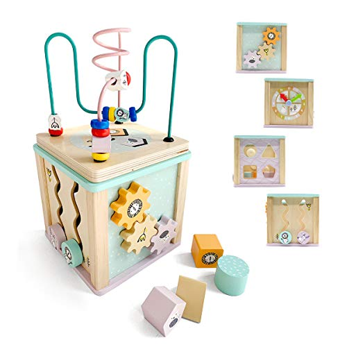 (LEO & FRIENDS 5 in 1 Wooden Activity Cube for Toddlers and Kids | Baby Educational Wooden Toy | Bead Maze | Shape Sorter |Teaching Clock| 18 M)