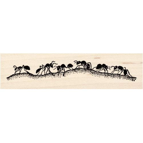 Large Ant Trail Rubber Stamp