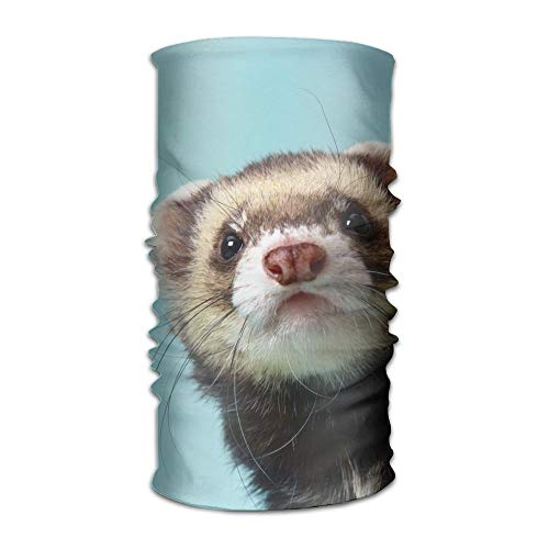 AP.Roon Adorable Ferret Face Unisex Multifunctional Headband Bandanas Headwear Balaclava Neck Gaiter Fishing Mask UV Protection for Daily Activities