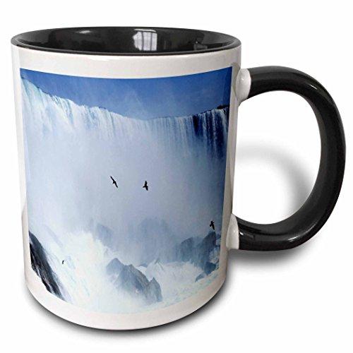 3dRose mug_56902_4