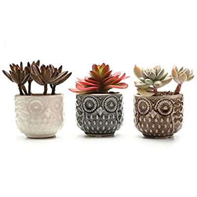 T4U Ceramic Succulent Planter Pot, Small Cactus Plant Pot Round Container Window Box Home and Office Decoration Desktop Windowsill Bonsai Pots Gift Ornament for Gardener Wedding Christmas