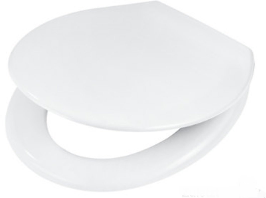 Outstanding Wellwater Toilet Seat Duroplast With Automatic Lowering Alphanode Cool Chair Designs And Ideas Alphanodeonline