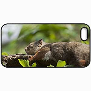 Fashion Unique Design Protective Cellphone Back Cover Case For iPhone 5 5S Case Branch Foliage Squirrel Sleeps Recreation Black