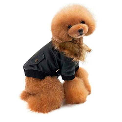 Pet Clothes Autumn and Winter Leather Jacket Coats Pet Teddy Poodle Chihuahua Puppy Dogs,Black,XXL