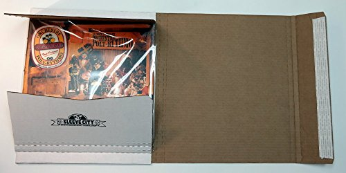 Deluxe Ultimate LP Mailer (10 Pack) by Sleeve City (Image #1)