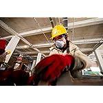 Dräger X-pect 8120 Surlunettes de Protection |Lunettes de sécurité réglables | Pour l'agriculture, l'industrie et le… 14