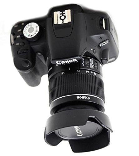 レンズフードを装着した一眼レフカメラの写真
