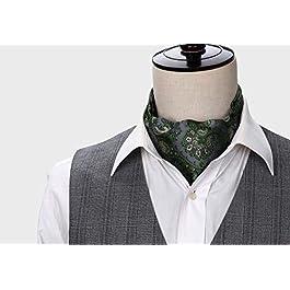 HISDERN Men's Floral Paisley Jacquard Woven Self Cravat Tie Ascot