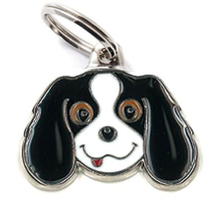 Mé daille MyFamily Cavalier King Blenheim plaque chien gravure gratuite coutume MF22ORANGE