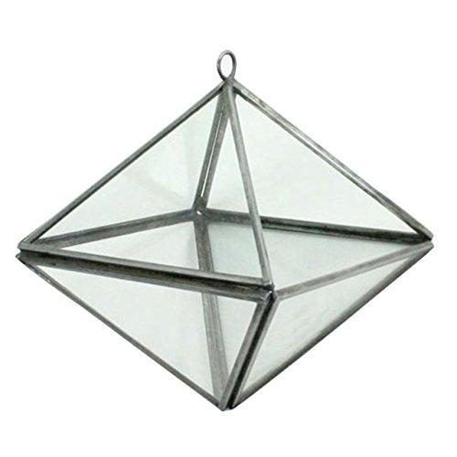 Pierre Geometric Hanging Terrarium - Octahedron