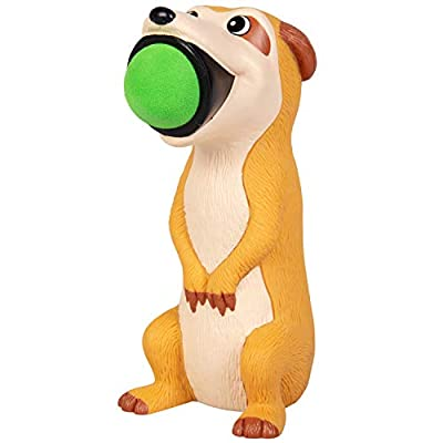 Hog Wild Meerkat Popper Toy - Shoot Foam Balls Up to 20 Feet - 6 Balls Included - Age 4+: Toys & Games