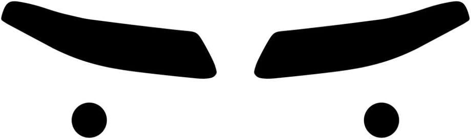 Rvinyl Rtint Headlight Tint Covers for Pontiac Bonneville 2000-2003 Application Kit