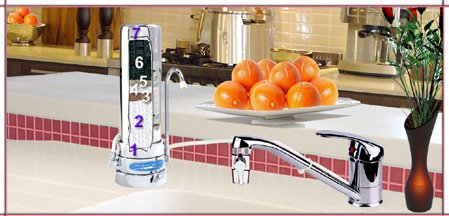 CRYSTAL QUEST countertop Replaceable Single Fluoride Multi PLUS Water Filter System -Stainless Steel by Crystal Quest