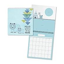 C.R. Gibson Blue Wild Adventure Baby Boy First Year Keepsake Calendar and Stickers