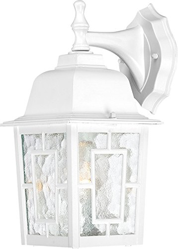 - Nuvo Lighting 60/4921 Banyon One Light Wall Lantern/Arm Down 100 Watt A19 Max. Clear Water Glass White Outdoor Fixture