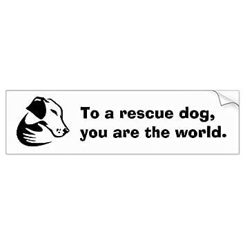 To a rescue dog you are the world bumper sticker sticker graphic
