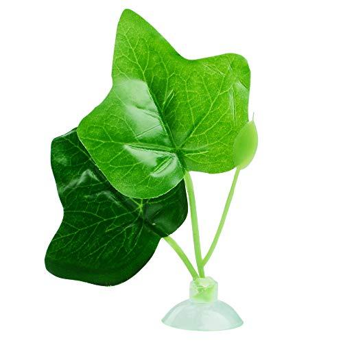 10 best betta fish accessories leaf