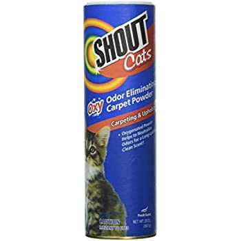 shout carpet cleaner for pets