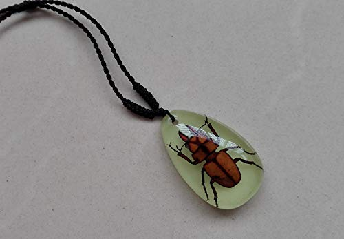 artificial man made crystal necklace pendant chain amber specimens insects scorpion spider jewelry gifts (a small shovel luminous 2 ()