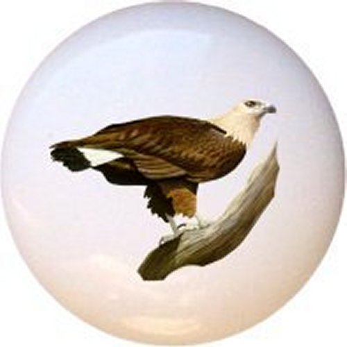 Pallas Fish Eagle Bird Decorative Glossy Ceramic Drawer Pull Knob