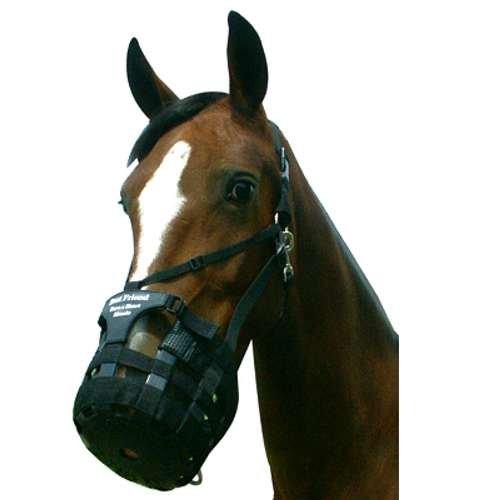 Best Friend Have a Heart Horse Grazing Muzzle Horse