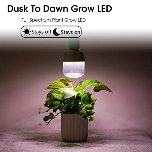 Grow Plants With Led Lights in US - 6