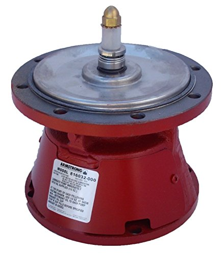 Armstrong 816032MF-000 Pump Bearing Assembly by Armstrong