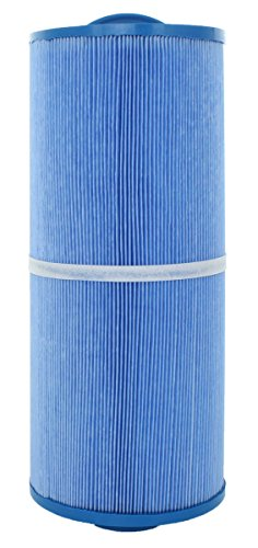 Marquis Spas - Single Replacement Filter , FC-0196M, 5CH-502RA, PPM50SC-F2M-M, AntiMicrobial microban cal spa 50 sq ft.