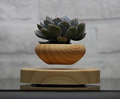 Levitating Air Bonsai Pot - Magnetic Levitation Suspension flower and air bonsai pot