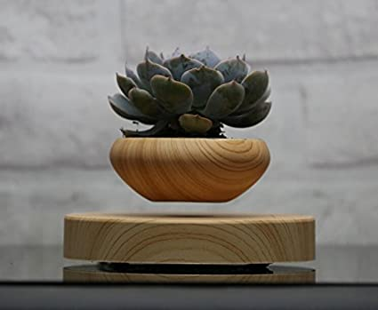 Amazon Com Levitating Air Bonsai Pot Magnetic Levitation